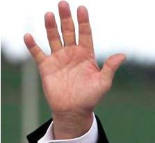 Hillary Clinton's Palm